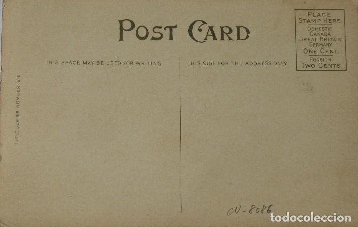 Postales: P-10070. A JACK AND TWO QUEENS. POSTAL AMERICANA AÑOS 20. SIN CIRCULAR. - Foto 3 - 195215435