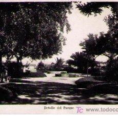 Postales: LA TOJA. DETALLE DEL PARQUE. L. ROISIN. AÑOS 50. ESCRITA Y FRANQUEADA. Lote 16475675