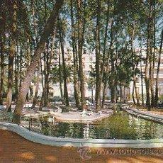 Postales: LA TOJA (PONTEVEDRA), ESTANQUE DE LOS CISNES. Lote 22370448