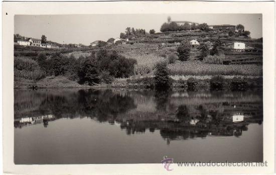 INTERESANTE POSTAL - PONTEVEDRA - PAISAJE DE SAN BENITO DESDE EL RIO LEREZ (Postales - España - Galicia Moderna (desde 1940))