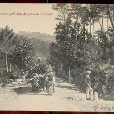 Postales: ANTIGUA FOTO POSTAL DE MONDARIZ - PONTEVEDRA - DE CAMINO PRO ELDO DESPUES DE LA LABRANZA - ED. THOMA. Lote 39585942