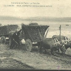 Postales: TARJETA POSTAL DE LA CORUÑA - CARRETAS CONDUCIENDO ALGAS - FOTOGRAFIA HAUSER Y MENET. Lote 46228951