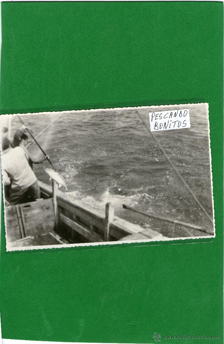 COSTA DE LUGO PESCANDO EL BONITO FOTO (Postales - España - Galicia Moderna (desde 1940))