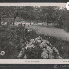 Postales: LA TOJA - PARQUE - FOTOGRAFICA ROISIN - (41349). Lote 54544949