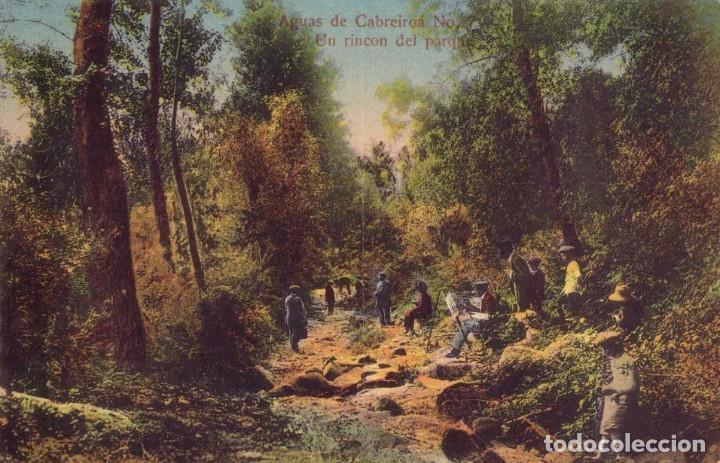 RRR POSTAL AGUAS CABREIROA 1910 UN RINCÓN DEL PARQUE - ERNESTO VERIN - ORENSE - OURENSE - GALICIA (Postales - España - Galicia Antigua (hasta 1939))