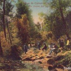 Postales: RRR POSTAL AGUAS CABREIROA 1910 UN RINCÓN DEL PARQUE - ERNESTO VERIN - ORENSE - OURENSE - GALICIA. Lote 68440297