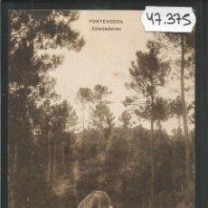 Postales: PONTEVEDRA - POSTAL - ALREDEDORES - EDICION VIÑAS -(47.375). Lote 89190940
