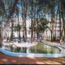 Postales: LA TOJA - VIGO - ESTANQUE DE LOS CISNES N° 7. Lote 91521760