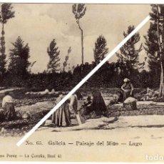 Postales: MAGNIFICA POSTAL - GALICIA - PAISAJE DEL MIÑO - LUGO . Lote 94172555
