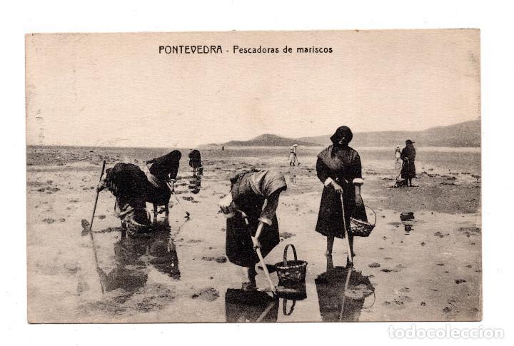 PONTEVEDRA.- PESCADORAS DE MARISCOS (Postales - España - Galicia Antigua (hasta 1939))