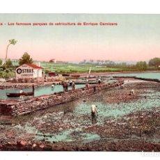 Postales: LA CORUÑA - LOS FAMOSOS PARQUES DE OSTRICULTURA DE ENRIQUE CARNICERO. EDICIÓN PHOTOGLOS, ZÜRICH. Lote 115033751