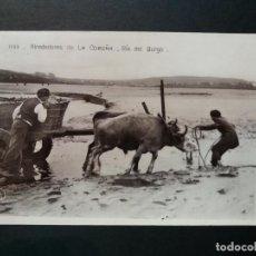 Postales: LA CORUÑA - ALREDEDORES - RIA DEL BURGO - FOTOGRAFICA - VER REVERSO - (52.759) . Lote 119234447