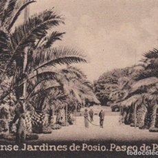 Postales: POSTAL ORIGINAL. DÉCADA 30. ORENSE. JARDINES DE POSIO. PASEO DE PALMERAS. Nº248. Lote 145974798
