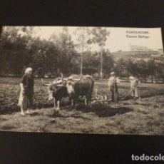 Cartes Postales: PONTEVEDRA ESCENA GALLEGA. Lote 147937570