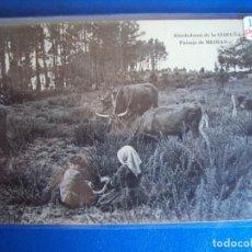 Postales: (PS-59914)POSTAL DE ALREDEDORES DE LA CORUÑA-PAISAJE DE MEIRAS. Lote 156929394