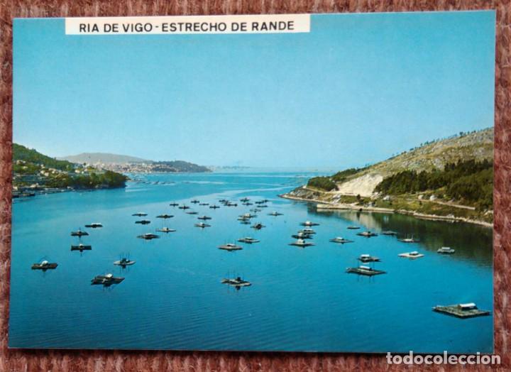 RIA DE VIGO - ESTRECHO DE RANDE (Postales - España - Galicia Moderna (desde 1940))