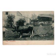 Postales: VIGO.(PONTEVEDRA).- LABRADORES, EDICIÓN FIGUEROA.. Lote 174592889