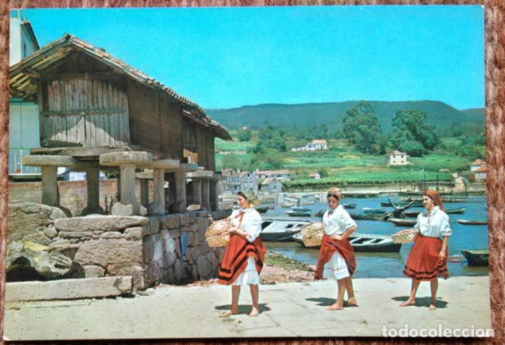 GALICIA - PESCATINAS (Postales - España - Galicia Moderna (desde 1940))
