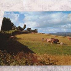Cartes Postales: LUGO. Lote 200891660
