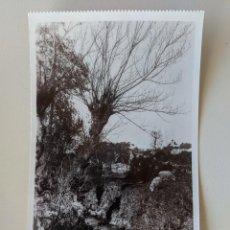 Postales: VIGO UN PAISAJE DE CASTRELOS 1518 GALICIA - FOTOGRAFICA - UNIQUE - SIN USO. Lote 211897660