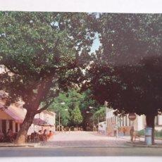 Cartes Postales: CALDAS DE REIS / CALDAS DE REYES - PASEO ROMÁN LÓPEZ - BUZÓN DE CORREOS - P42744. Lote 234849480