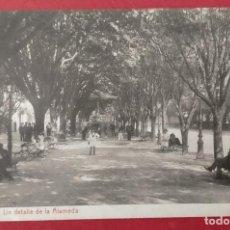 Postales: VIGO UN DETALLE DE LA ALAMEDA 6437 FOTOTIPIA THOMAS BARCELONA. Lote 248798510