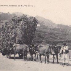 Postales: PONTEVEDRA VIGO ALDEANO CONDUCIENDO UN CARRO DE TOJO. ED. J. BUCETA, HAUSER Y MENET. SIN CIRCULAR. Lote 267515409
