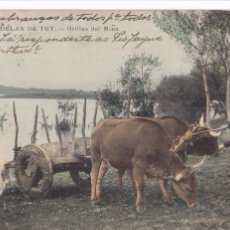 Cartes Postales: PONTEVEDRA, CALDAS DE TUY ORILLAS DEL MIÑO. ED. E.J.G. BYN COLOREADA. VER REVERSO SIN DIVIDIR. Lote 285650923