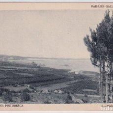 Postales: PAISAJES GALLEGOS. AROSA PINTORESCA. 5 MAIZALES SIN CIRCULAR. Lote 288463278