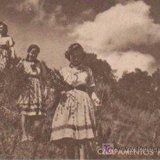 Postales: POSTAL ANTIGUA :CAMPAMENTOS FEMENINOS - FRENTE DE JUVENTUDES. Lote 11082850