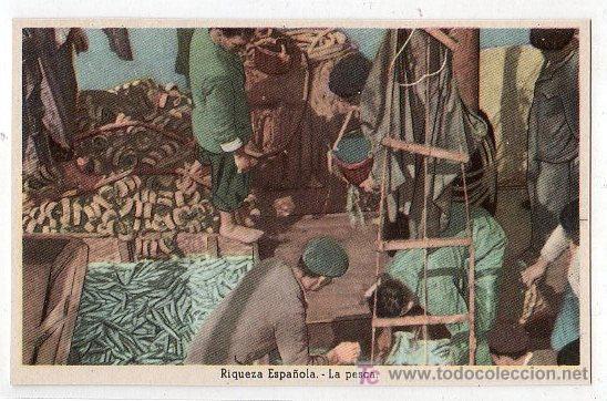 TARJETA POSTAL. RIQUEZA ESPAÑOLA, LA PESCA. EDICIONES DE LA VICESECRETARIA DE EDUCACION POPULAR (Postales - Postales Temáticas - Guerra Civil Española)