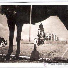 Postales: GUERRA CIVIL - SERIE D NUM 2 - CUARTEL LENIN - EJERCICIOS HIPICOS - (8333). Lote 29386650
