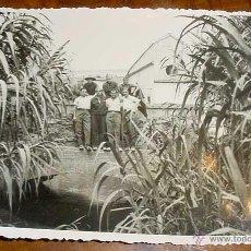 Postales: ANTIGUA FOTO POSTAL DE MILITARES REPUBLICANOS - MILICIANOS - GUERRA CIVIL EN CALELLA - BARCELONA - N. Lote 38245182