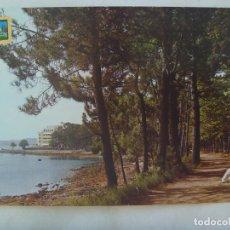 Postales: POSTAL DE LA TOJA ( PONTEVEDRA ) : CAMINO, BOSQUE Y HOTEL . AÑOS 60. Lote 173534422