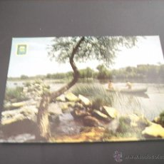 Postales: LOGROÑO ( LA RIOJA) RIO EBRO. Lote 44895259
