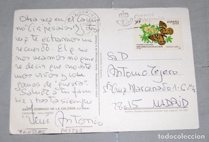 Postales: Catedral gallinero de Santo Domingo de la Calzada (La Rioja). - Foto 2 - 133542214
