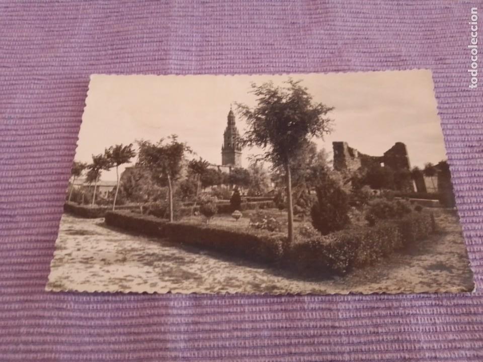 FOTO POSTAL BRIONES LOGROÑO LA RIOJA FOTO MONTON (Postales - España - La Rioja Moderna (desde 1.940))