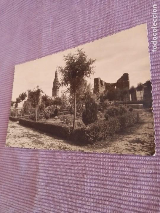 Postales: Foto postal Briones Logroño la rioja foto monton - Foto 2 - 258517940
