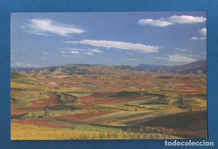 POSTAL SIN CIRCULAR PAISAJE OTOÑAL CENICERO Y TORREMONTALBO (LA RIOJA) EDITA TURISMO (Postales - España - La Rioja Moderna (desde 1.940))