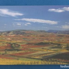 Postales: POSTAL SIN CIRCULAR PAISAJE OTOÑAL CENICERO Y TORREMONTALBO (LA RIOJA) EDITA TURISMO. Lote 287619128