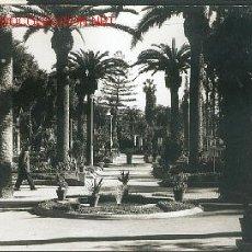 Postales: MELILLA, PARQUE HERNANDEZ, VISTA PARCIAL. Lote 26929279