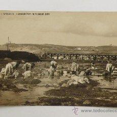 Postales: MELILLA, Nº6. LAVANDERAS EN EL RIO DE ORO. POSTAL FOTOGRÁFICA DE 1916.. Lote 23420748