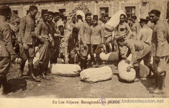MELILLA. EN LOS ALIJARES. SOLDADOS RECOGIENDO LOS PETATES. SIN CIRCULAR (Postales - España - Melilla Antigua (hasta 1939))
