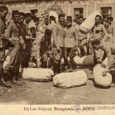 Postales: MELILLA. EN LOS ALIJARES. SOLDADOS RECOGIENDO LOS PETATES. SIN CIRCULAR. Lote 29891958