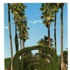 Postales: MELILLA - PARQUE HERNÁNDEZ - EDICIÓN BEASCOA - POSTAL. Lote 33597106