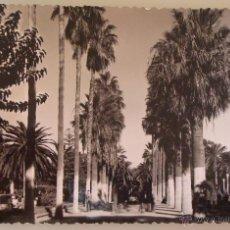 Postales: POSTAL DE MELILLA. AÑOS 30 50. AÑO 1958. VISTA PARCIAL PARQUE HERNÁNDEZ PASEO LATERAL. 1578. . Lote 39576282