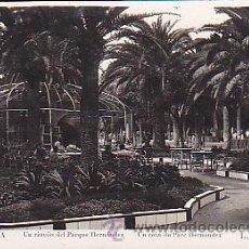 Postales: POSTAL MELILLA UN RINCON DEL PARQUE HERNANDEZ . Lote 43393638