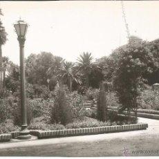 Postales: MELILLA - PARQUE HERNÁNDEZ. JARDINES - Nº 1067. Lote 52313082