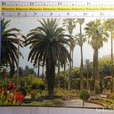 Cartes Postales: POSTAL DE MELILLA. AÑO 1965. PARQUE HERNÁNDEZ. 744. Lote 97087747
