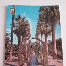 Postales: POSTAL MELILLA - PARQUE DE HERNANDEZ - 1963 - ESCUDO DE ORO 3 - SIN CIRCULAR. Lote 120846319